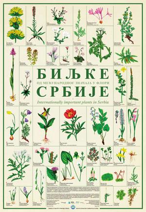 Biljke Srbije