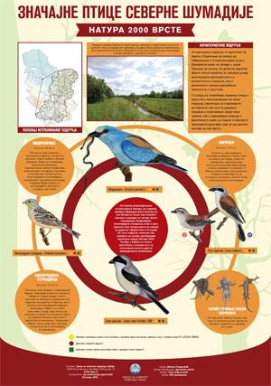 Znacajne ptice severne Sumadije