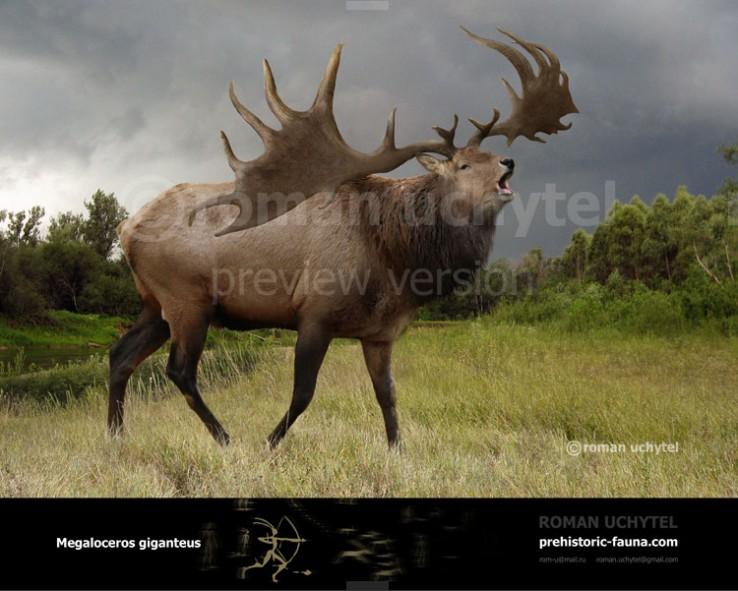 Megaloceros-giganteus-2017-738×591