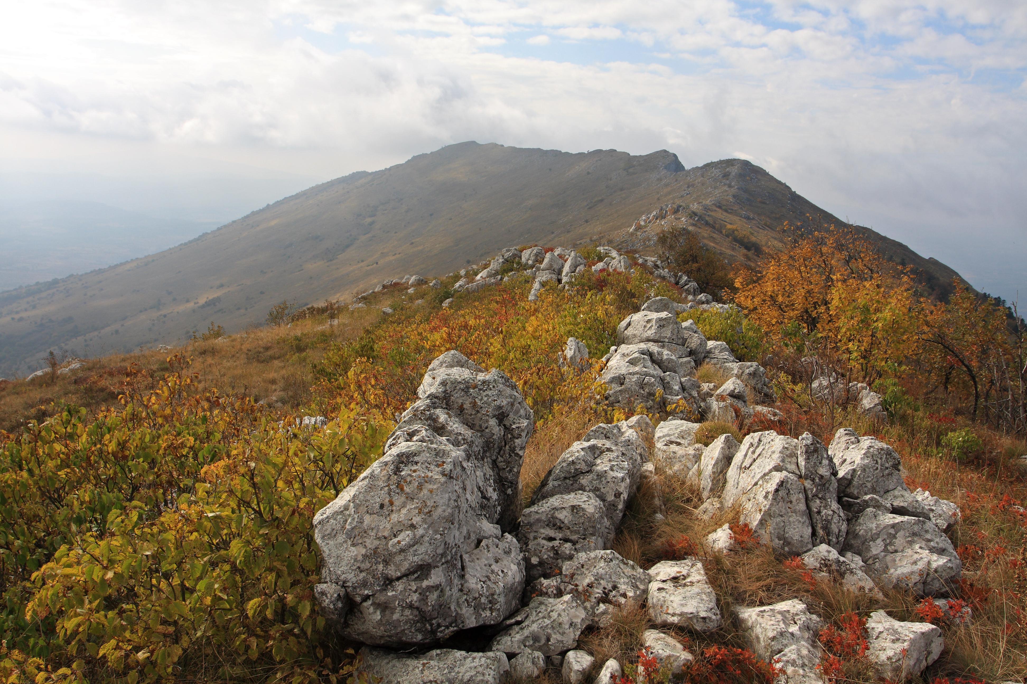 SRP Rtanj, Srđan Marinčić