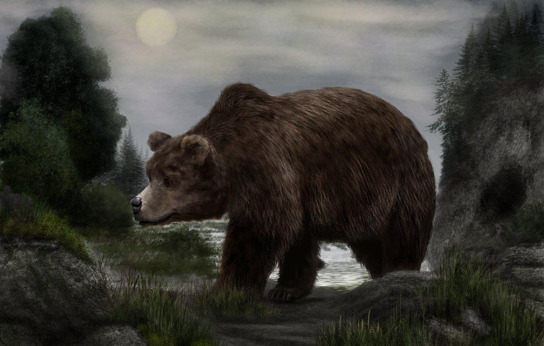pleistocene_of_europe__ursus_spelaeus_by_mihin89-d9dr3u4.png