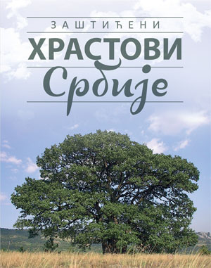 Protected Oaks of Serbia
